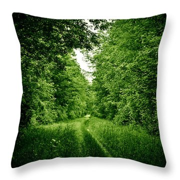 Lying In Wait... Throw Pillow