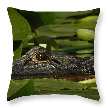 Lying In Wait Throw Pillow by Vivian Christopher