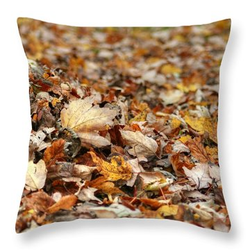 Lying On The Ground Throw Pillow by Ester  Rogers