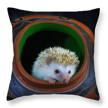 Lyla The Hedgehog Throw Pillow