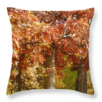 M Landscapes Fall Collection No. Lf5 Throw Pillow