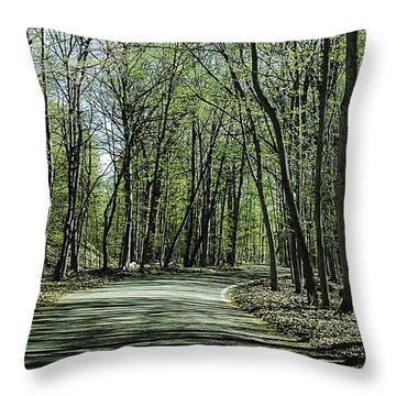 M119 Tunnel Of Trees Michigan Throw Pillow