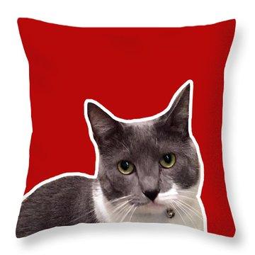 Mac Attack-custom Order Throw Pillow