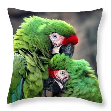 Macaws In Love Throw Pillow by Diane Merkle