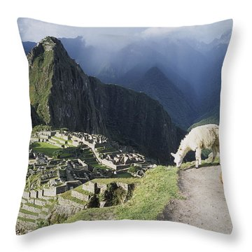 Machu Picchu And Llamas Throw Pillow by James Brunker