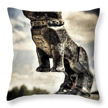 B61 Throw Pillows
