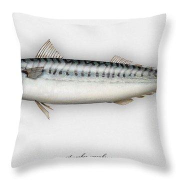 Mackerel Scomber Scombrus  - Maquereau - Caballa - Sarda - Scombro - Makrilli - Seafood Art Throw Pillow