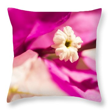 Macro Bougainvillea Bloom 2 Throw Pillow by Leigh Anne Meeks