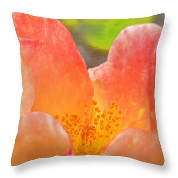 Macro Of California Winter Flower Throw Pillow