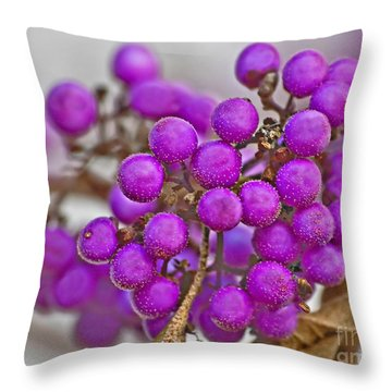 Macro Of Purple Beautyberries Callicarpa Plant Art Prints Throw Pillow by Valerie Garner