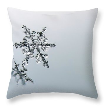 Macro Snowflake Throw Pillow