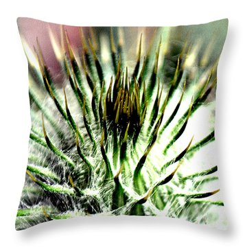 Macro Thistle  Throw Pillow