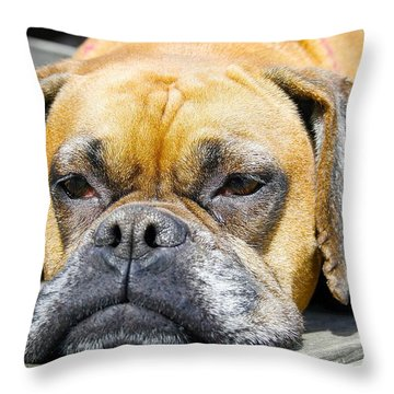 Macy's Lazy Days Throw Pillow by Jeff Mize