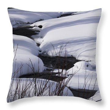 Throw Pillow featuring the photograph Mad Creek Winter At Elk Confluence by Daniel Hebard