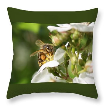 Mad Honeybee Throw Pillow by Lucinda VanVleck