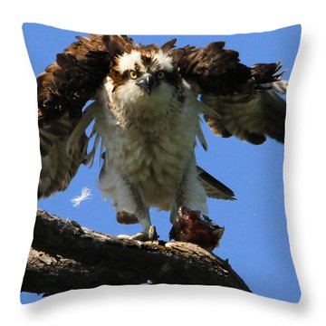 Mad Osprey Throw Pillow