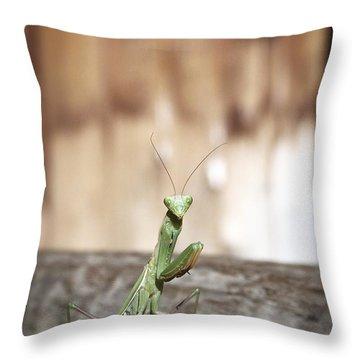 Madame Mantis Throw Pillow