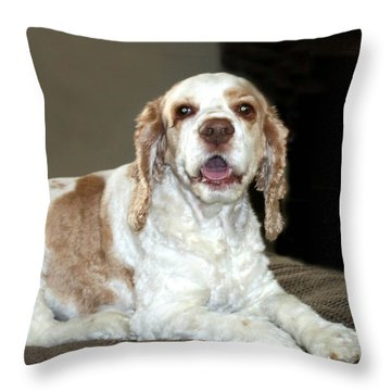 Maddie Throw Pillow by Ellen O'Reilly