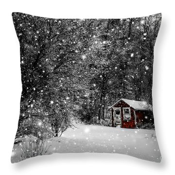 Made In Maine Winter  Throw Pillow by Brenda Giasson