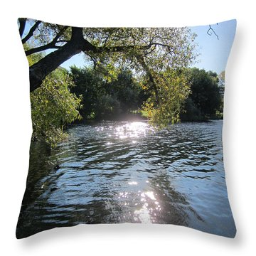 Made In Sweden Throw Pillow