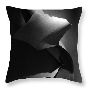 Madrona Bark Black And White Throw Pillow