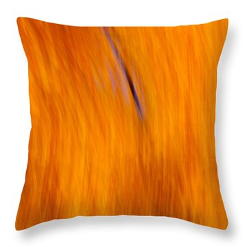 Throw Pillow featuring the photograph Maelstrom Of Fall Colors by Jeff Folger
