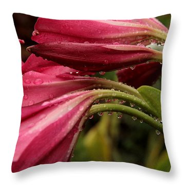 Magenta Rain Throw Pillow