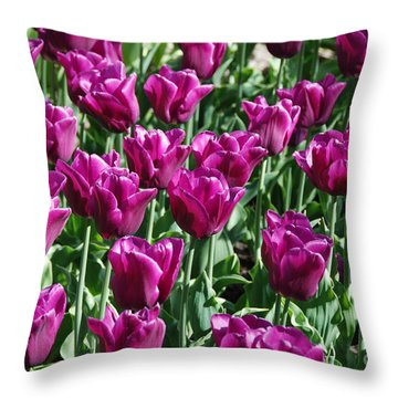 Throw Pillow featuring the photograph Magenta Tulips by Allen Beatty