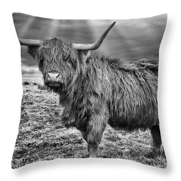 Magestic Highland Cow Throw Pillow by John Farnan