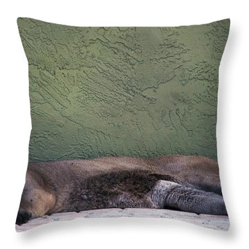 Magesty Throw Pillow
