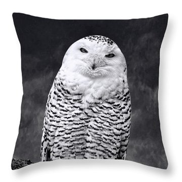 Magic Beauty - Snowy Owl Throw Pillow