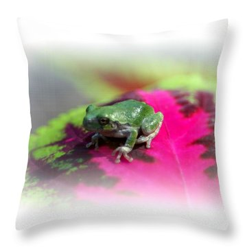 Magic Carpet Coleus Leaf Throw Pillow