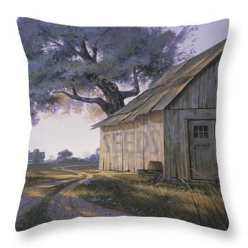 Magic Hour Throw Pillow by Michael Humphries