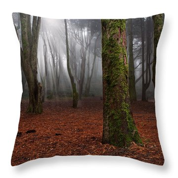 Magic Light Throw Pillow by Jorge Maia