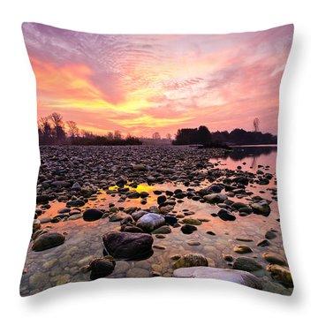 Magic Morning II Throw Pillow by Davorin Mance