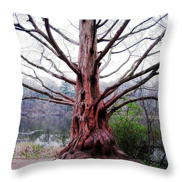 Throw Pillow featuring the photograph Magic Tree by Nina Silver