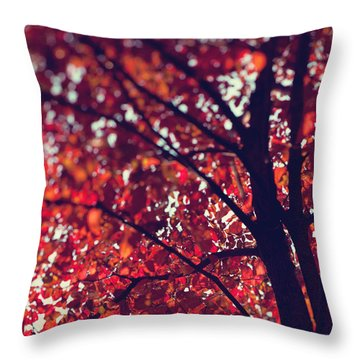 Throw Pillow featuring the photograph Magical Autumn by Kim Fearheiley