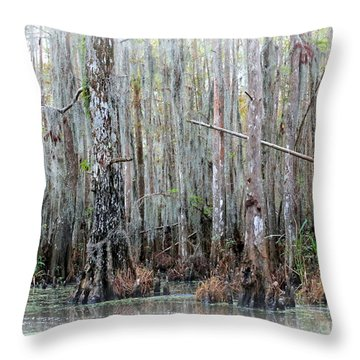 Magical Bayou Throw Pillow by Carol Groenen