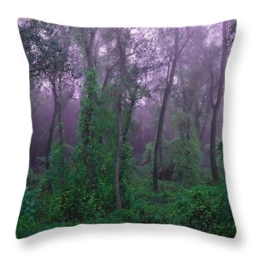 Magical Fairy Forest Throw Pillow