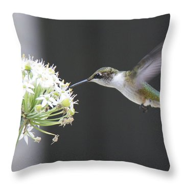 Magical Hummingbird Throw Pillow