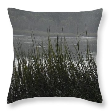 Throw Pillow featuring the photograph Magical Inlet by Patricia Greer