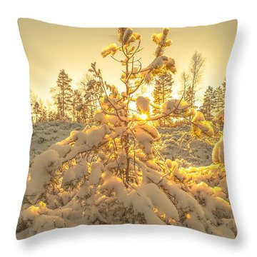 Magical Moments In The Middle Of January Throw Pillow by Rose-Maries Pictures