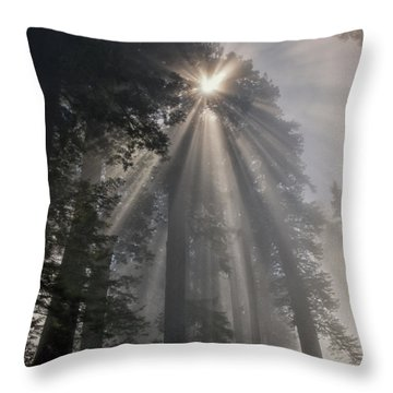 Magical Morning Throw Pillow by Betty Depee