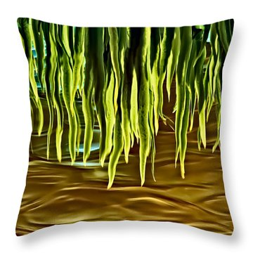 Magical Reflections Throw Pillow