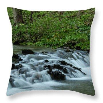 Magical River Throw Pillow