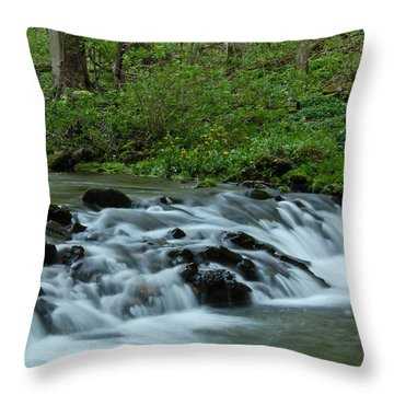 Magical River Throw Pillow
