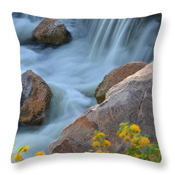 Magical Waters Throw Pillow by Deb Halloran