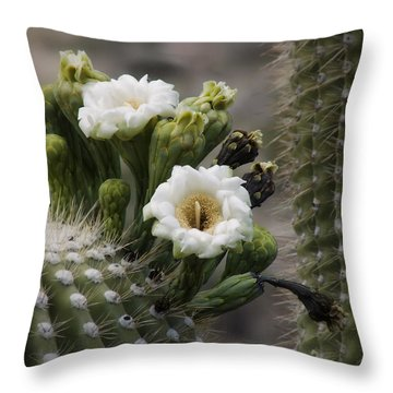 Throw Pillow featuring the photograph Magnificant Bloom Of The Saguaro by Lucinda Walter