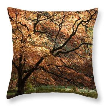 Magnificent Autumn Throw Pillow by Anne Gilbert
