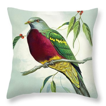 Magnificent Fruit Pigeon Throw Pillow by Bert Illoss